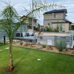 ヤシの木とドライガーデン IN CHIBA
